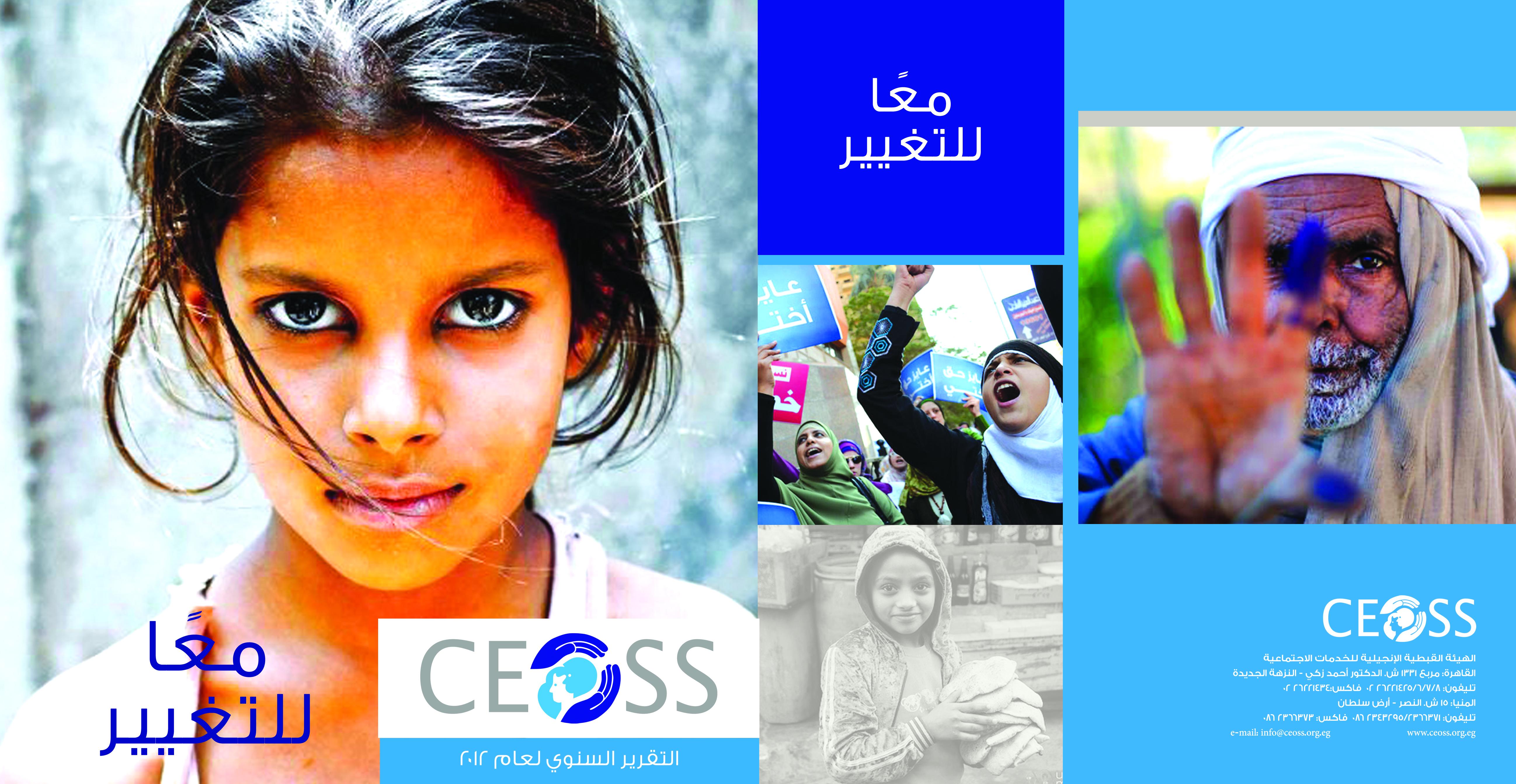 التقرير السنوي 2012