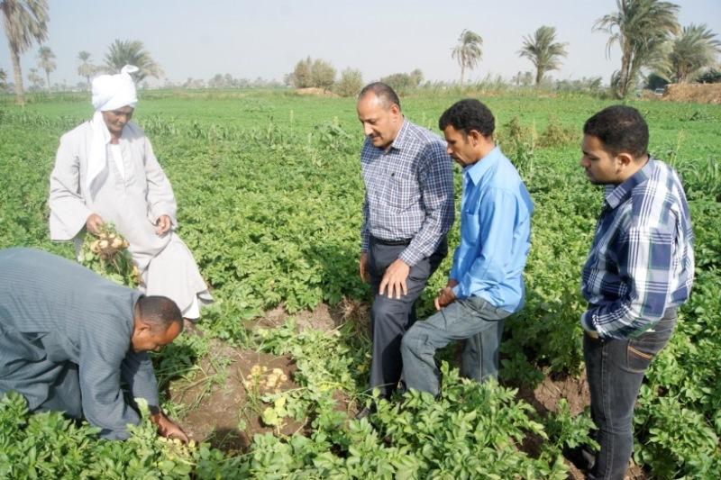برامج الزراعة