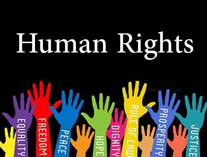 تعليم حقوق الانسان في الجامعات المصرية