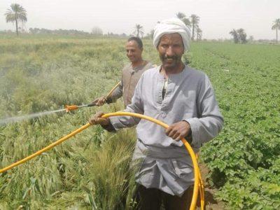 ازمة السيول تدخلات مع المزارعين لحماية الزراعة